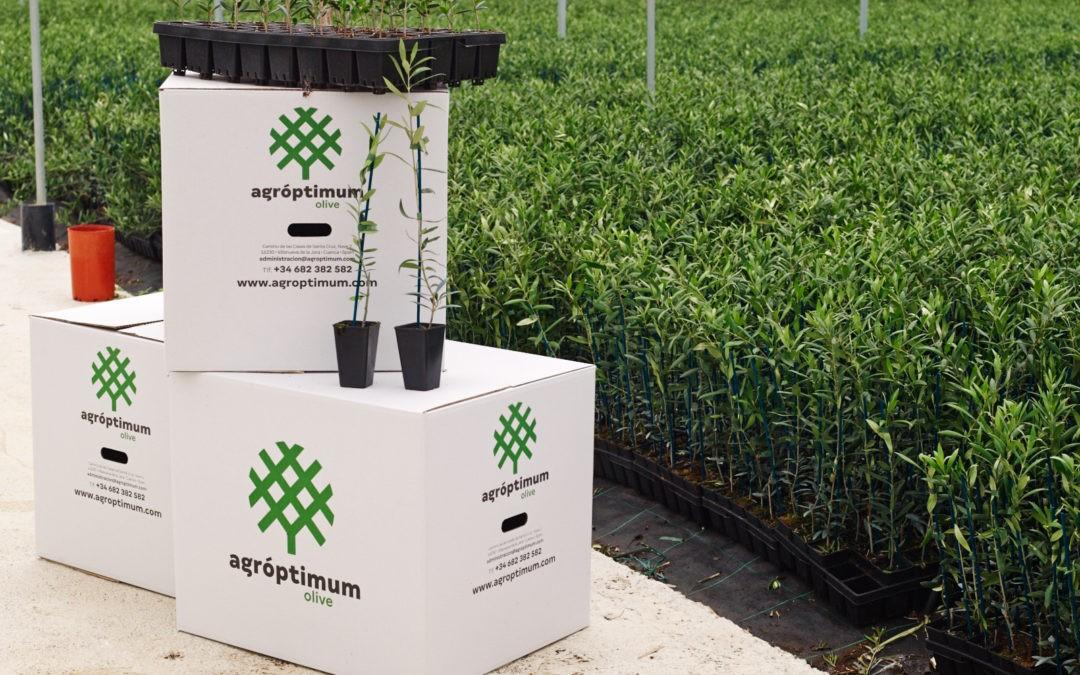 Agróptimum, la empresa jareña que innova en el campo