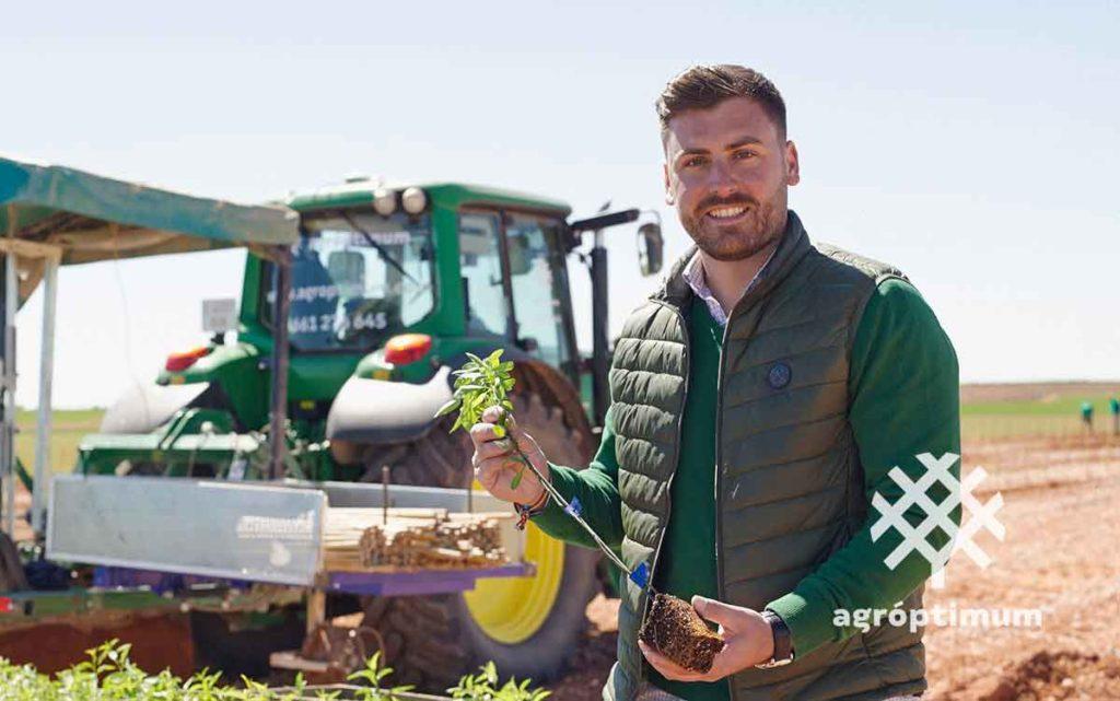 Empresa plantación de pistacho