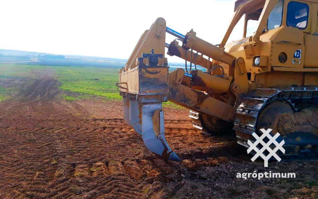 Preparar el terreno para plantar pistacho