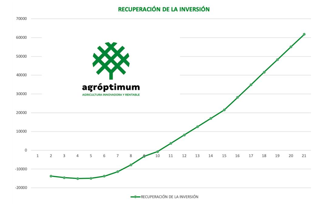 El cultivo de pistacho profesional: estudio técnico y proyecto de viabilidad