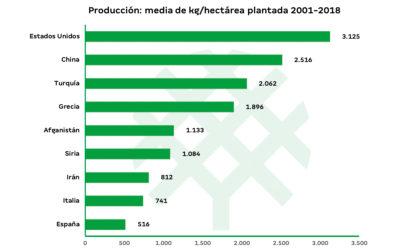 Producción de pistacho por hectárea plantada en el mundo