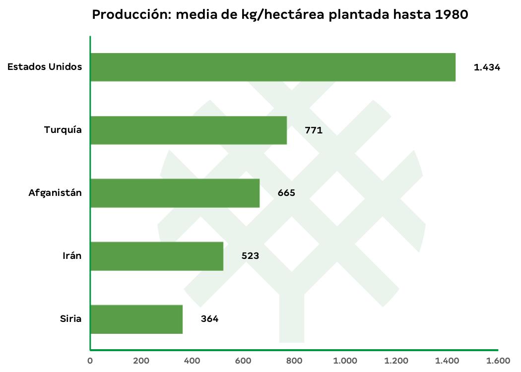 producción de pistacho por hectárea en el mundo-2