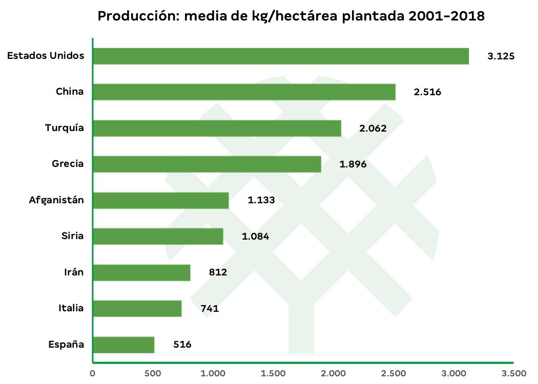 producción de pistacho por hectárea en el mundo-3