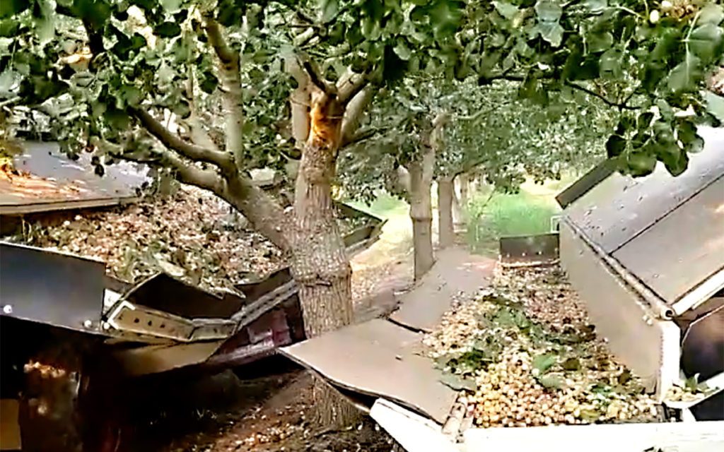 Maquinaria de recolección de pistacho
